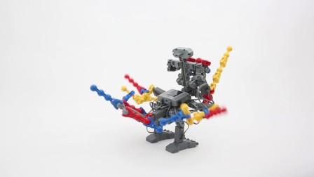 能力风暴教育机器人伯牙项目展示——龙鹰骑士