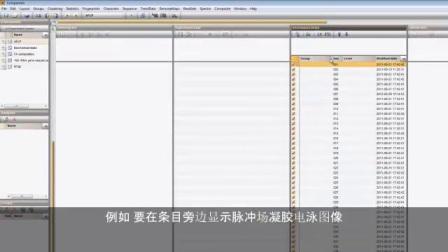 从指纹数据创建树 [BioNumerics 7] - Subtitles