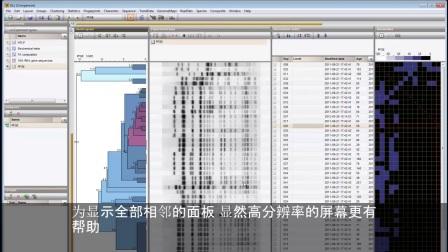 """""""比较""""窗口中的指纹显示选项 [BioNumerics 7] - Subtitles"""