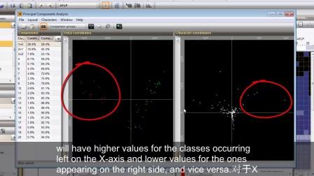 指纹数据集的主成分分析和判别分析 [BioNumerics 7] - Subtitles