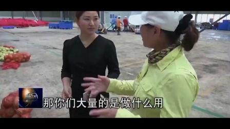"""《聚焦三农》秋收""""周""""记——云南华坪芒果香_0"""