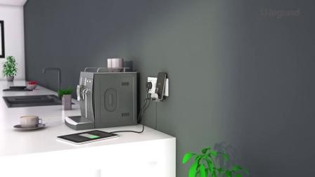 罗格朗无线充电插座(带USB)