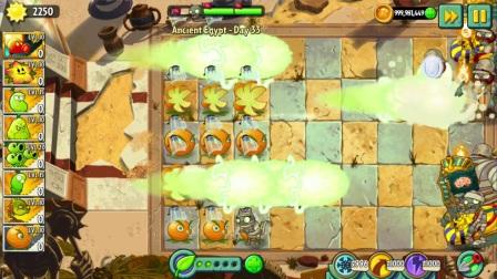 植物大战僵尸2国际版 充能柚子VS火焰豌豆射手