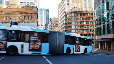 悉尼巴士 环形码头附近 P8044500