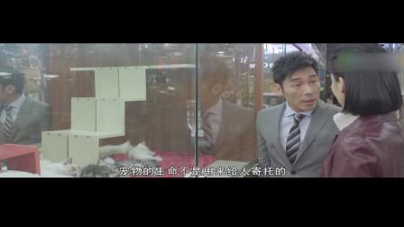 《玛嘉烈与大卫-前度》13集预告片
