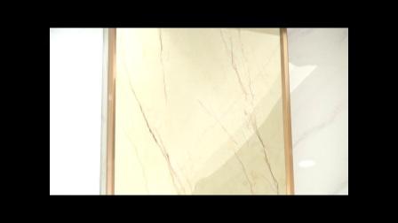 FJTV20170919《完全家装》招财鱼——打造艺术空间