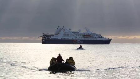与夸克去南极:在福克兰群岛和南乔治亚岛的探险生活
