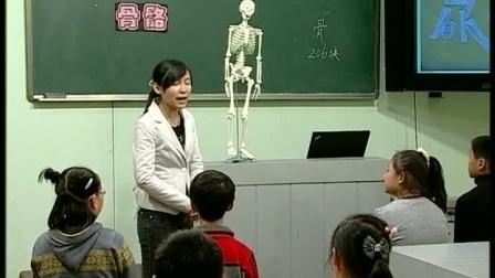 《骨骼》苏教版科学四年级-南京紫东实验学校:郭佳