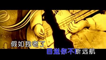 崔来宾 - 你的背影(HD)