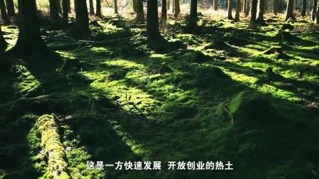 抚州市东乡区王桥镇宣传片—《秀美王桥》