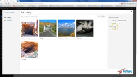 03.如何在WordPress中创建相册图片库