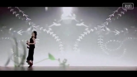 2016最新颖清新唯美单人《花语传说》互动视频舞蹈
