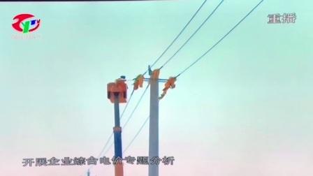 国网枣阳市供电公司优化经济发展环境