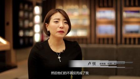 成功故事2017_合集