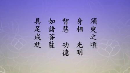 《净土大经科注》(第四回)净空法师讲解465