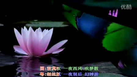 贾鹏芳二胡曲《睡莲》国.粤歌词卡拉OK字幕(主旋律伴奏)