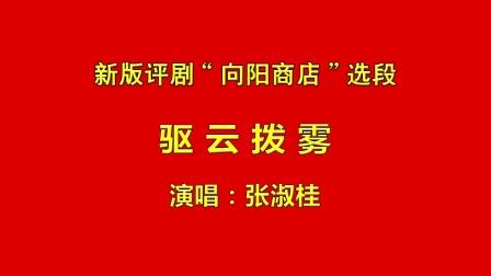 """新版评剧""""向阳商店""""选段《驱云拨雾》张淑桂 演唱"""