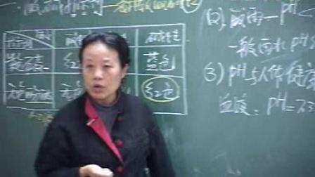 6【精华学校】初中化学范卿平第9讲_溶液的酸碱性---2