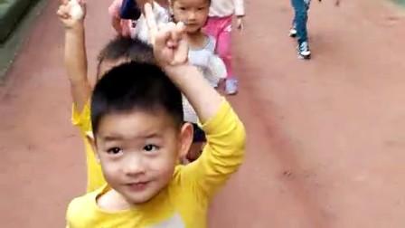 (2017.10.10三岁七月十三天)小小智慧树,宝贝倍儿棒!