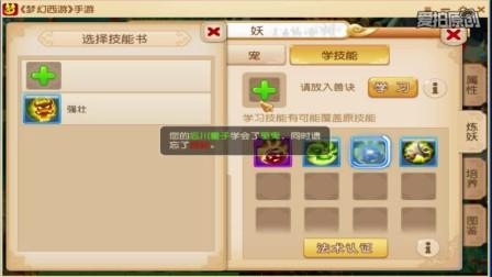 梦幻西游手游互通双平台合宠2