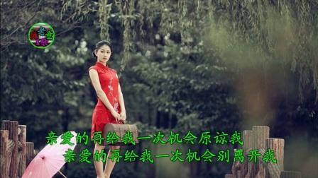视频歌曲:美女 K歌《新浪人情歌》老玩童