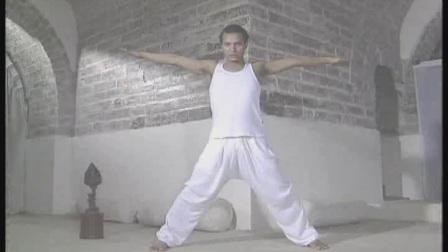 纯粹瑜伽-高级课程.avi