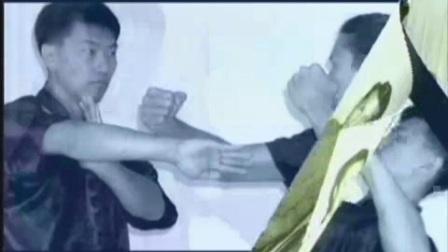 [叶问宗师一脉.咏春拳体系教学全7集.].Benny.Meng.-.Ip.Man.Wing..(6)