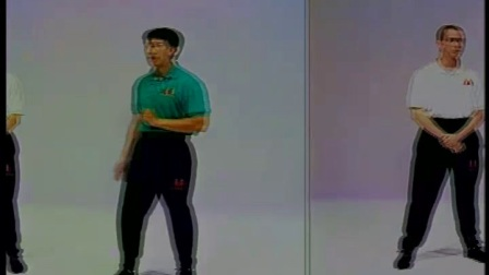 [叶问宗师一脉.咏春拳体系教学全7集.].Benny.Meng.-.Ip.Man.Wing..(5)(1)