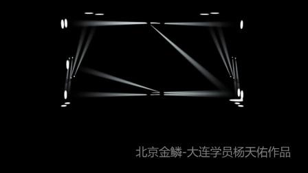 北京金鳞-大连学员杨天佑灯光秀作品