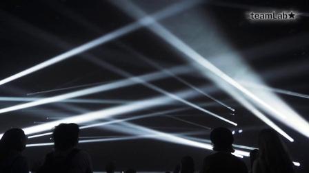 Light Stream and Purification - teamLab Jungle Art Night