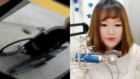 杨爽与手机YY新人