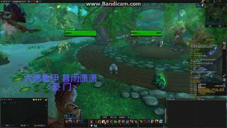 魔兽世界安静一键宏7.3阿古斯之影熊T守护德鲁伊讲解视频
