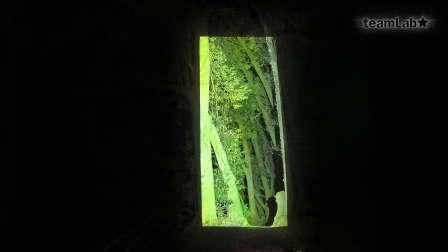 被切断的连续生命-森之道 / Cut out Continuous Life - Forest Path