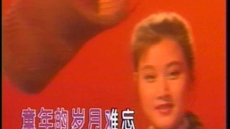 宋祖英-小背篓-国语-流行-DVD原唱
