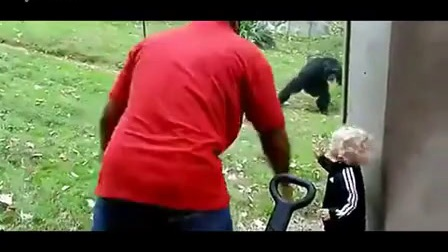 动物也幽默,动物搞笑视频集锦推荐视频_标清