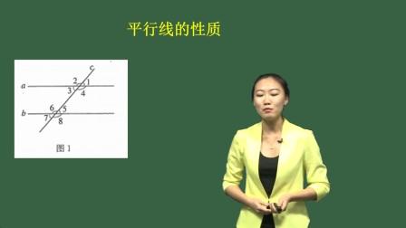 2019华图中公教师资格证面试-初中数学试讲范例-赵洵-1