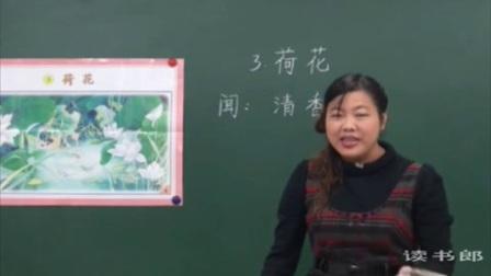 语文小学3下3  荷花_视频课堂