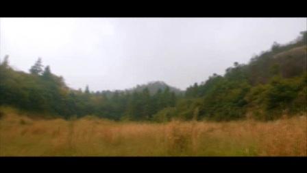 林业生态建设 第十八集:生态文明主题微电影展:火速营救