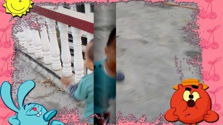 我的视频相册1