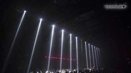 Light Enters the Jungle