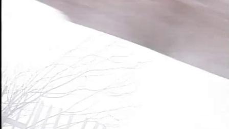 《天师钟馗之六月雪》01