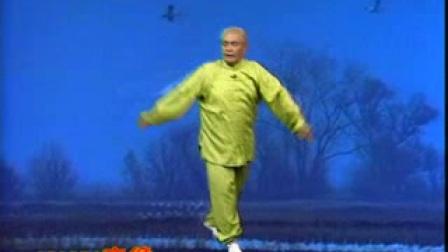 白猿通背拳---单操手散手技法(张贵增)