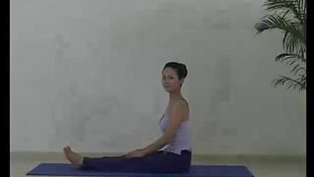 基础哈他瑜伽课程视频
