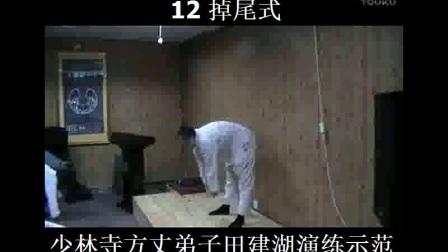 12少林易筋经教学视频-掉尾式