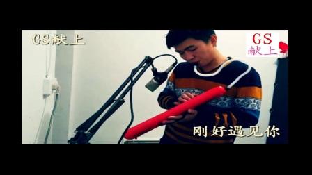 【GS献上】李玉刚 - 刚好遇见你 - 口风琴演奏