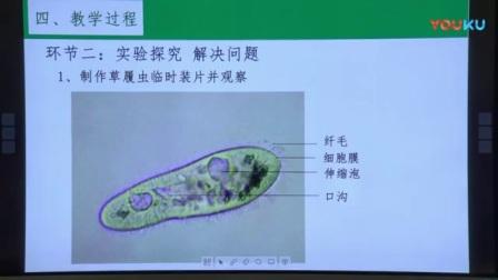 全国第四届初中生物教师比赛现场说课视频《观察草履虫的形态、运动、取食和趋性》一等奖冯翠翠