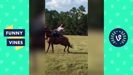 Funniest Equestrian Horse Fails and Falls