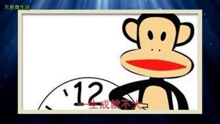 猴年出生人:几月出生的肖猴人命最好?你是几月的属猴人?