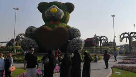 参观迪拜奇迹花园