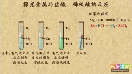 探究金属与盐酸、稀硫酸的反应